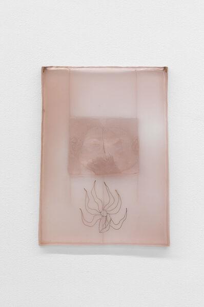 ASMA, 'Verdad rosa indiscutible', 2019
