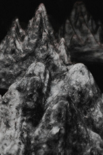 Tian Ye, 'Dimness 13 [混沌 13]', 2009