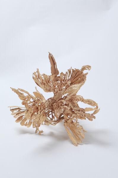 Mori Junichi, 'flare (birds)', 2010