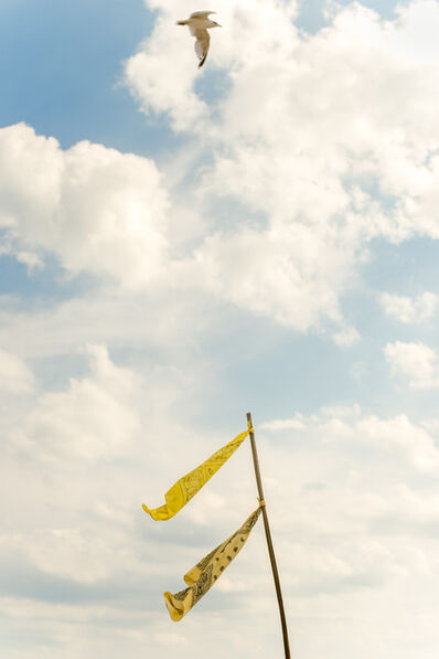 Bryson Rand, 'Vincent's Flags (Fire Island)', 2017