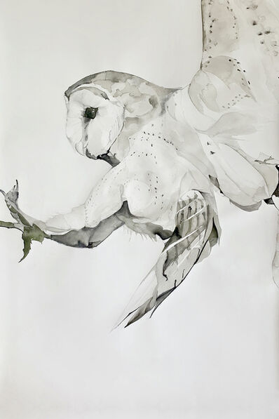 Heather Lancaster, 'Land', 2019