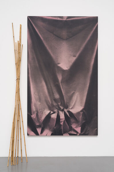 Ulla von Brandenburg, 'Folds and Bamboo', 2015