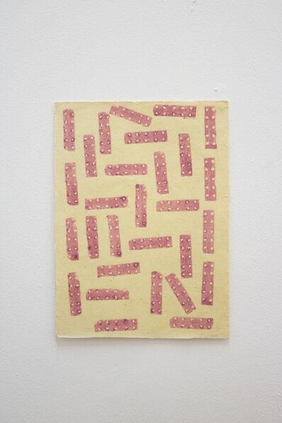 Sheroanawë Hakihiiwë, 'Pinta de pez II'