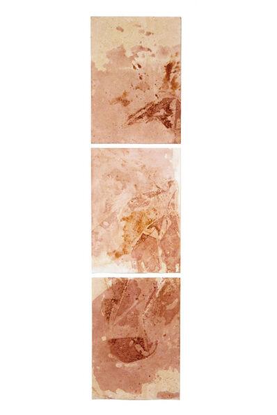 Sandra Monterroso, 'Distortions 10', 10
