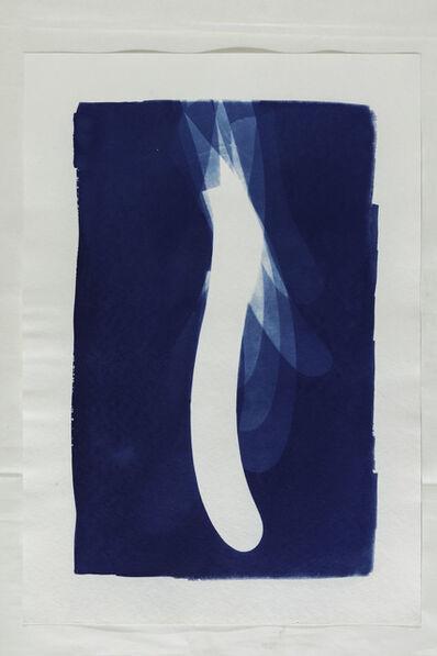 Agustina Nuñez, 'Serie Cianotipos', 2019