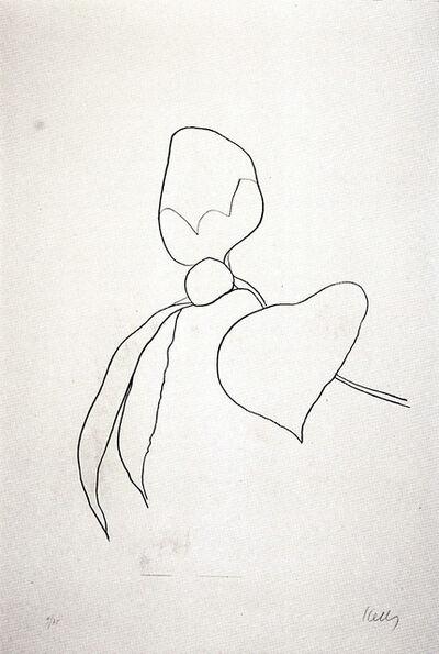 Ellsworth Kelly, 'Camellia I', 1964