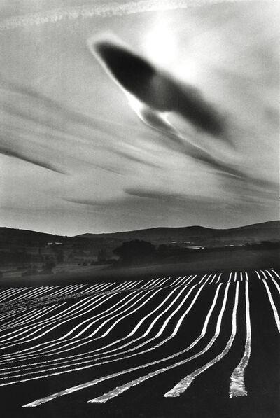 Martine Franck, 'Melon plantation, Montjustin, Haute-Provence', 1976