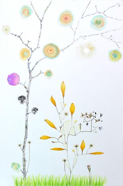 Marilla Palmer, 'Nightshade Geometry', 2012