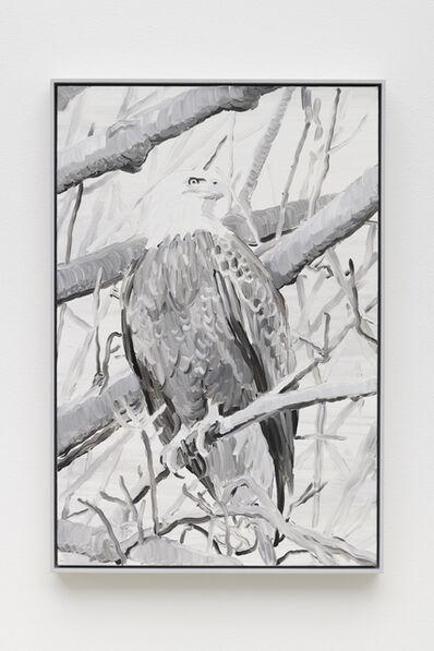 Cynthia Daignault, 'Elegy (Eagle)', 2019