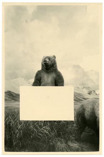 Bruno V. Roels, 'Fake Billboards (Bear)', 2018