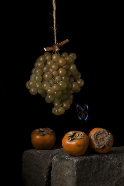 Paulette Tavormina, 'Persimmons, After A.C.', 2009