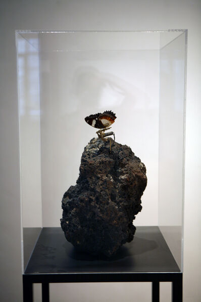 Rebecca Horn, 'Metamorphoses of the Rock', 2014