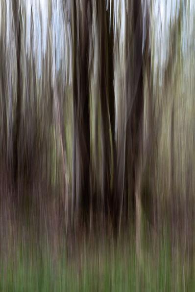 Florence Sanz, 'Verticality', 2015