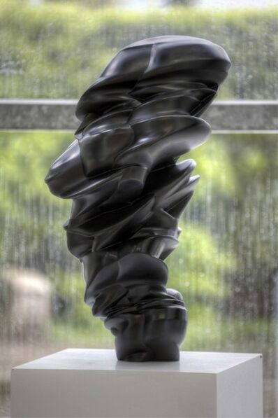 Tony Cragg, 'Loop', 2014