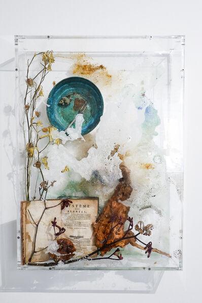 Bianca Bondi, 'Bloom (Eat the Earth)', 2018