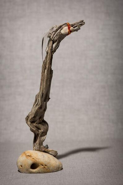 Sylvie Franquet, 'Cormorant (Shag)', 2016
