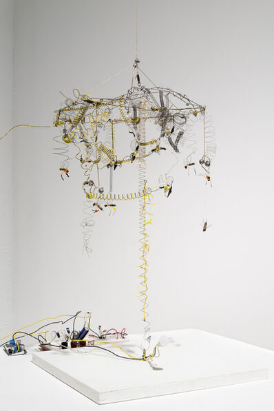 Kelly Heaton, 'Kinetic Study of Bees No.', 2013