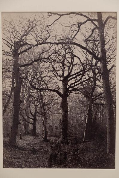 Constant Alexandre Famin, 'Trees', 1880