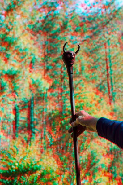 Maxime Rossi, 'Ernst walking stick at Bob's place', 2014