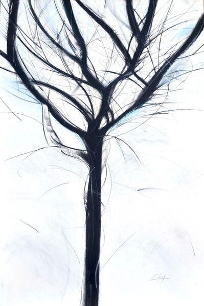 Jo-Ann Acey, 'Winter Trees, No.2, Series 2', 2017