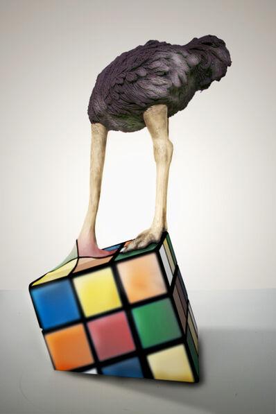 Stefano Bombardieri, 'Struzzo Rubik', 2018