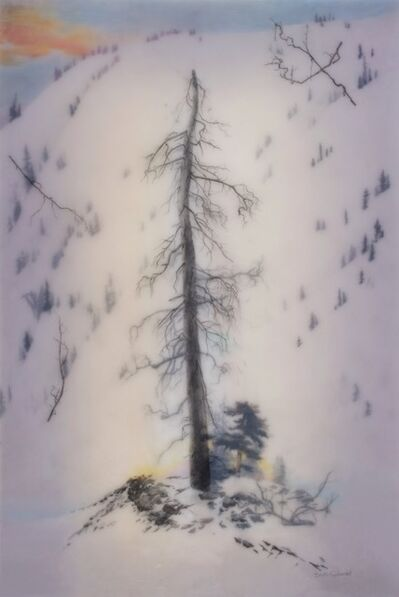 Brooks Salzwedel, 'Yosemite Forever', 2019