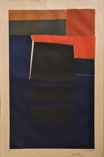 Bertrand Dorny, 'Japanese habitat ', 1972