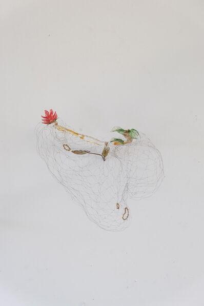 Luz Angela Lizarazo, 'Nido Rojo', 2019