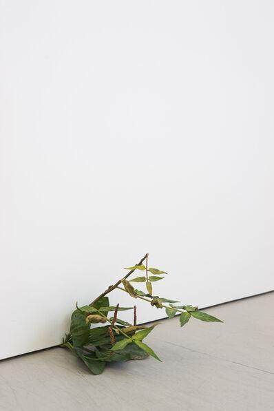 Tony Matelli, 'Weed 76-08', 2008