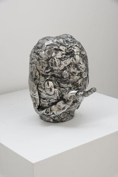 Joakim Ojanen, 'Twig Nose', 2017