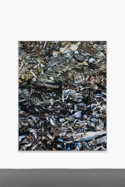 Mike Bouchet, 'Bounty (Chip)', 2016