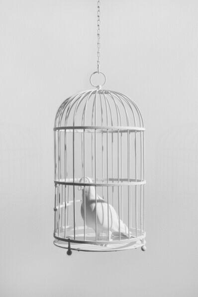 Dorota & Steve Coy, 'Caged Bird', 2020
