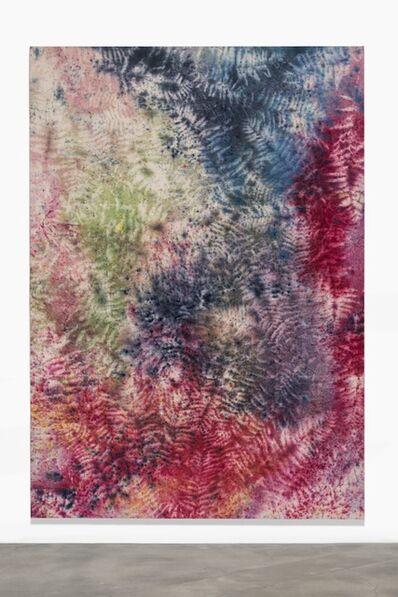 Sam Falls, 'Untitled (Hartland, VT, Fern 11V)', 2013