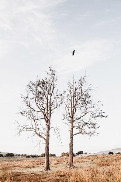 Rachael Baskerville, 'Lungs', 2019