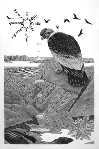 Eric Beltz, 'Andean Condor', 2015
