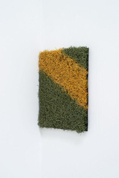 Karin Sander, 'Seitenlinie / Sideline', 2019