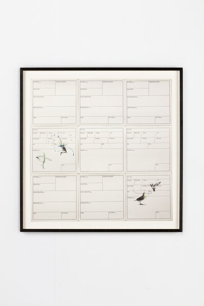 Petrit Halilaj, 'Several birds fly away when they understand it (Inventory Cards VIII)', 2013