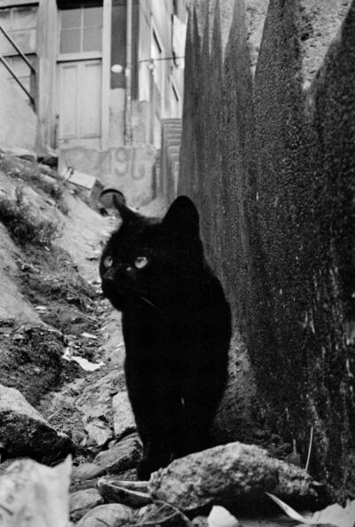 Sergio Larrain, 'Valparaiso, Chile', 1963