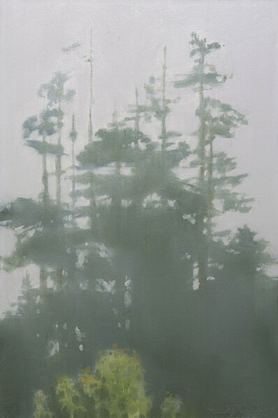 Marilyn Turtz, 'Trees in Fog'