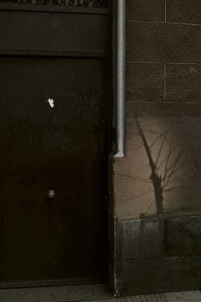 Boris Savelev, 'tree shadow, Madrid', 2012