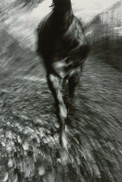 Lynn H. Butler, 'Passage Through Sleepy Hollow', circa 1988