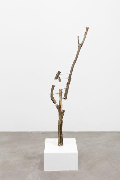 Antti Laitinen, 'Untitled (2)', 2017