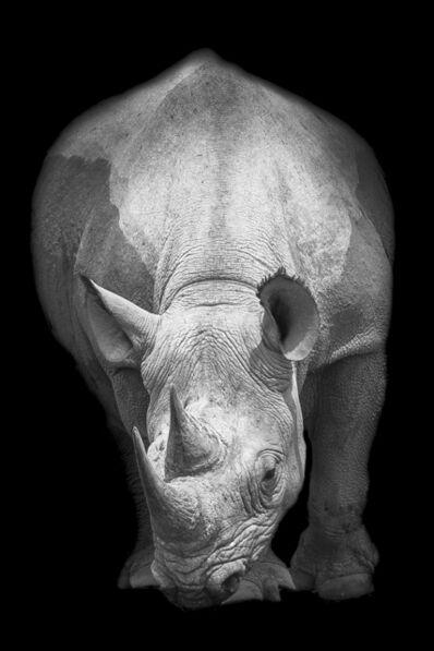 Marco Simoni, '13000 grams', 2016