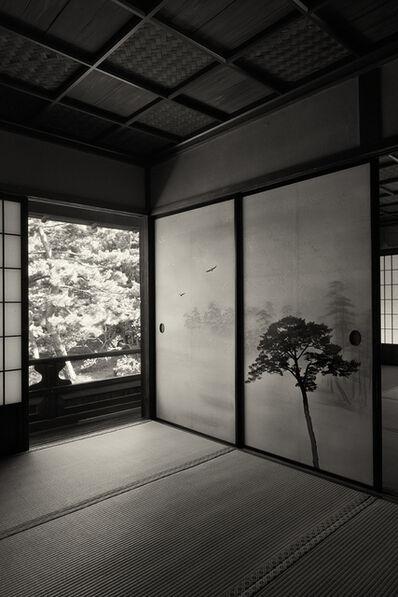 Kenji Wakasugi, 'Miracle Pine Tree', 2016