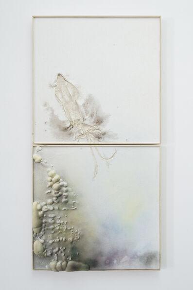 Guillaume Leblon, 'La grande seiche II', 2014