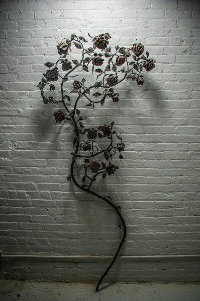 Sam Tufnell, 'Rosewall', 2015