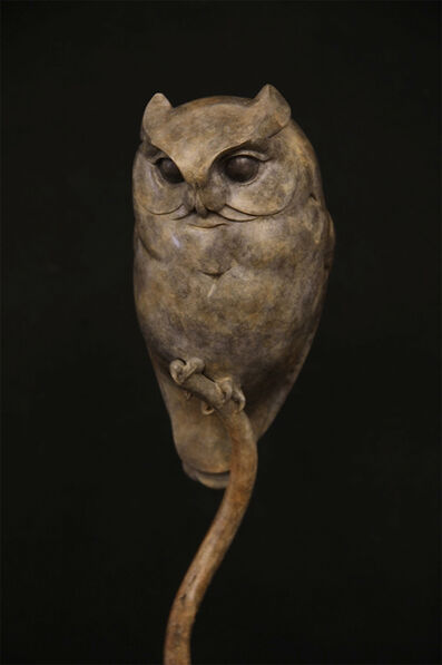 Adam Binder, 'Scops Owl', 2016