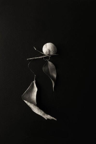Cristina Kahlo, 'Equilibrio', 2020