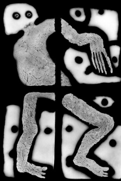 Roger Ballen, 'Giant', 2013