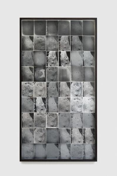 Nicolai Howalt, 'Spider mites 1', 2018